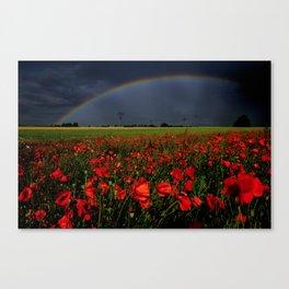 Poppies under a rainbow Canvas Print