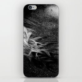 White Peacock Feathers iPhone Skin