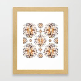 Kaleidoscope II-I Framed Art Print