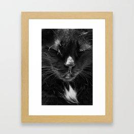 Ma chatte - my #cat Framed Art Print