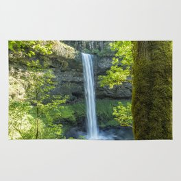 South Falls During Spring Rug