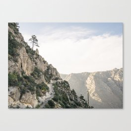 Guadalupe Mountains National Park, Texas. Canvas Print
