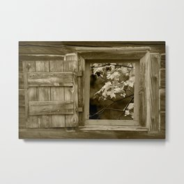 Sepia Photo of Fall Leaves viewed through a Barn Window Metal Print