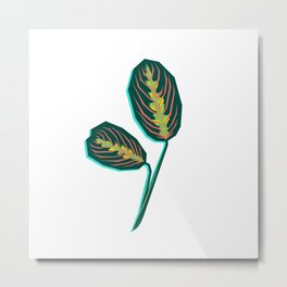 Geometric Jungle — Prayer Plant 'Maranta leuconeura' Metal Print