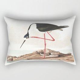 Long legged avocet, Birds of America, Audubon Plate 328 Rectangular Pillow