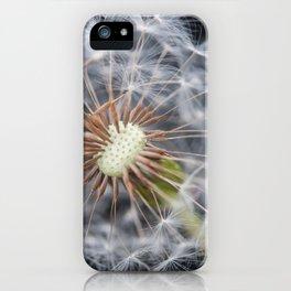 Dandelion Seeds iPhone Case