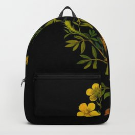 Potentilla Fruticosa Mary Delany Vintage Floral Collage Botanical Flower Backpack