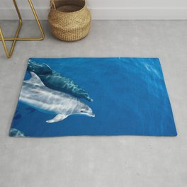 Common Dolphin Rug