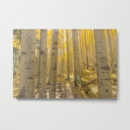 Good Vibes in The Forest Metal Print