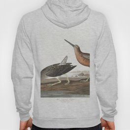 Red breasted snipe, Birds of America, Audubon Plate 335 Hoody