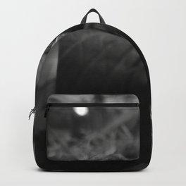 companion  Backpack