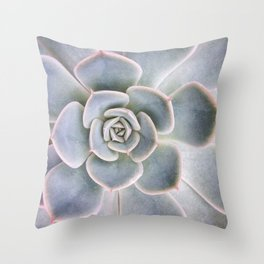 Nature Photography | Cactus Art | Pink and Blue Succulent | Plant | Botanical Throw Pillow