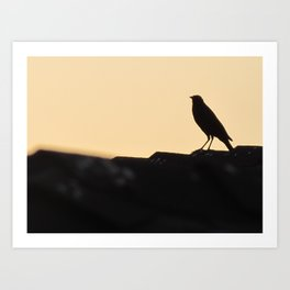 Solid State Art Print