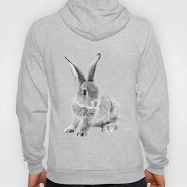 Rabbit 25 Hoody