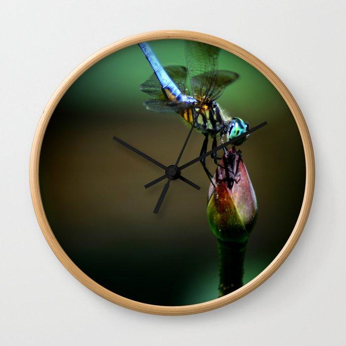Great Blue Skimmer Wall Clock
