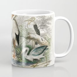 Common Crane White Stork Gigantic Crane Common Heron and Little Egret from A history of the earth an Coffee Mug