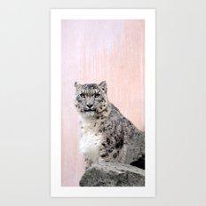 Snow Leopard in Pink Art Print