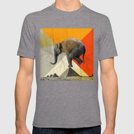 Balance of the pyramids T-shirt
