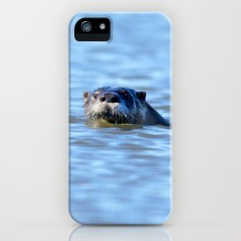 Watercolor Otter 18, Janes Island, Maryland iPhone Case