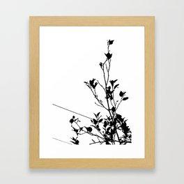 Botanical Contrast Framed Art Print