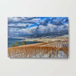 Okanagan Valley Winter Vineyard Metal Print