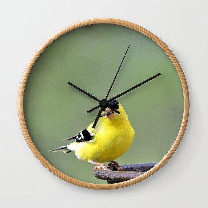 Yellow Finch Wall Clock