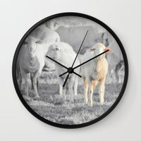 stay gold Wall Clocks featuring STAY GOLD by SUNLIGHT STUDIOS  Monika Strigel