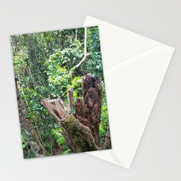 A cyclone damaged tree in the rain forest Stationery Cards