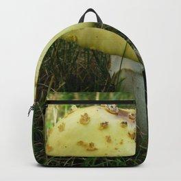 Fly on Magic Mushroom Backpack