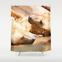 bears Shower Curtains featuring Bears by Sylvia C