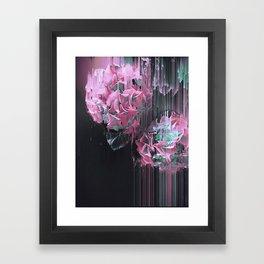 Glitch Pink Hydrangea Framed Art Print