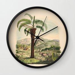 Tree cocos capitata L  diplothemoum campestre L 9 Wall Clock