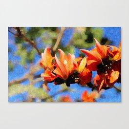 Jungle Flame - Palaash Canvas Print