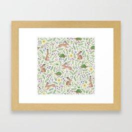 Spring Time Tortoises and Hares Framed Art Print