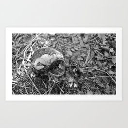 Nothing Is Important Art Print