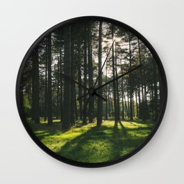 Sunlight through forest of Pine trees (Pinus sylvestris). Thetford, Norfolk, UK. Wall Clock