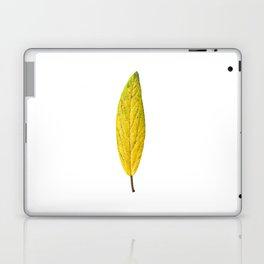 Autumn yellow leave 01 Laptop & iPad Skin