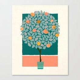 Fruit Tree Topiary Canvas Print