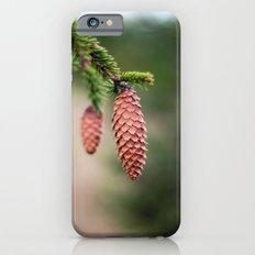 Baby Pine Cones iPhone 6s Slim Case
