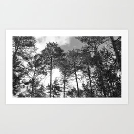 Open Spaces - Berkshire England Art Print