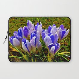 Blue Purple Crocuses Laptop Sleeve