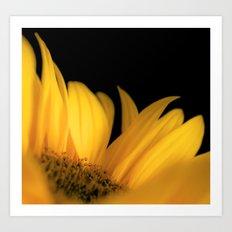 Yellow petals Art Print