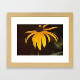 Night Flower Framed Art Print