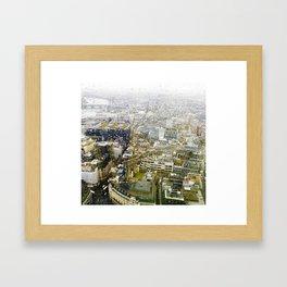 Skygarden Framed Art Print