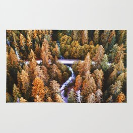 forest aerial view in yosemite Rug