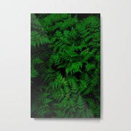 Deep Forest Ferns Metal Print