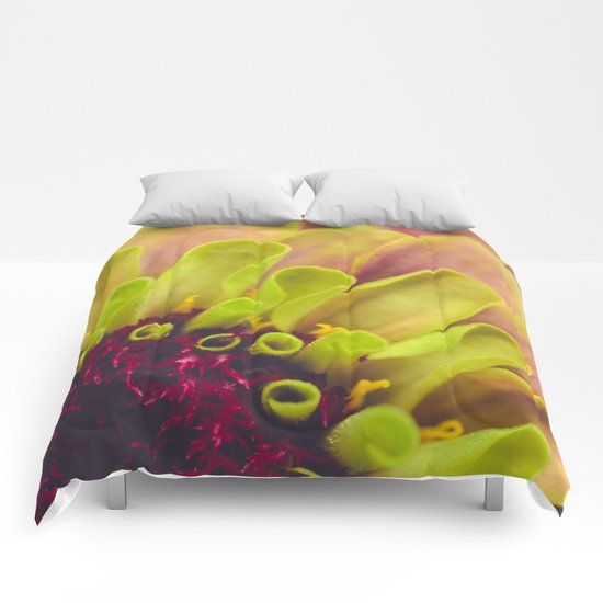 Colors of Summer Comforters
