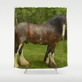 Clyde the Clydesdale Shower Curtain