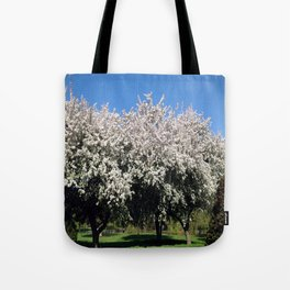Crab Apple Trees in the Spring Tote Bag