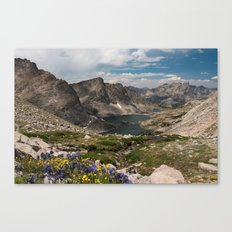 Alpine Lakes, Wildflowers and Mountains in the Wyoming Wilderness Canvas Print